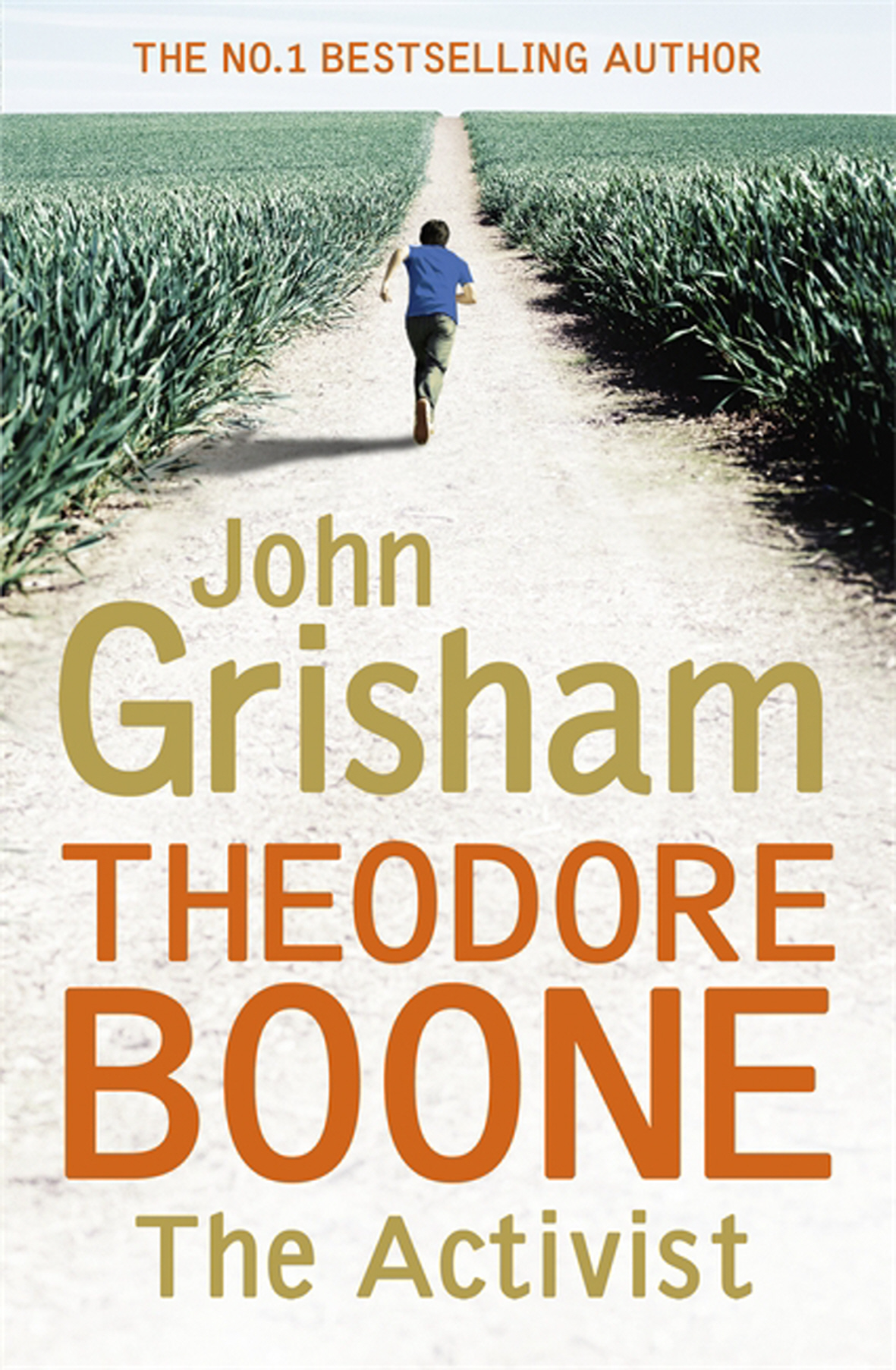 Indian Book Reviews | Promote Your Book | Author ... Theodore Boone